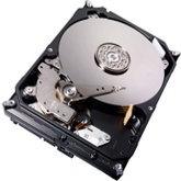 Western Digital zamyka fabrykę HDD. Przyszłość to SSD