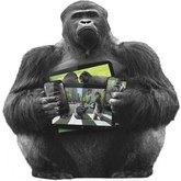 Gorilla Glass 6 - szkło zwiększające odporność na upadki