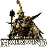 Morrowind GOTY za darmo z okazji 25-lecia serii Elder Scrolls!