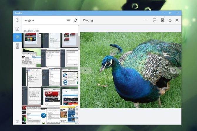 Dropbox dla Windows 10 #3