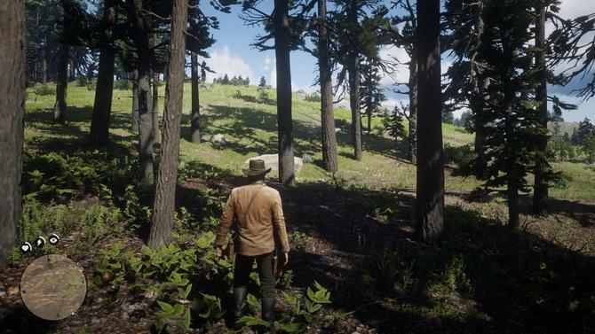 Test wydajności Red Dead Redemption 2 PC - Vulkan vs DirectX 12 [3]