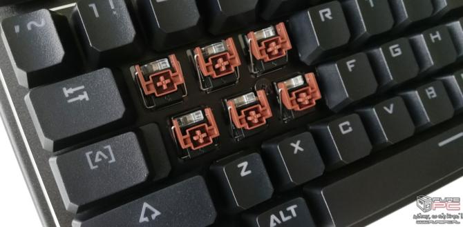 Test Bloody B975: Zacne granie także na brązowych przełącznikach [11]