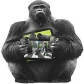 Corning Gorilla Glass 5 - koniec z rozbitymi ekranami?
