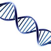Zabrakło Ci magazynu pamięci? Zawsze możesz użyć swojego DNA