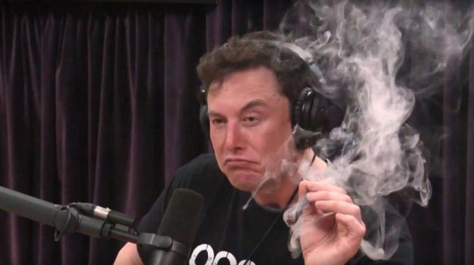 Elon Musk: niedługo Neuralink połączy mózg z komputerem [1]