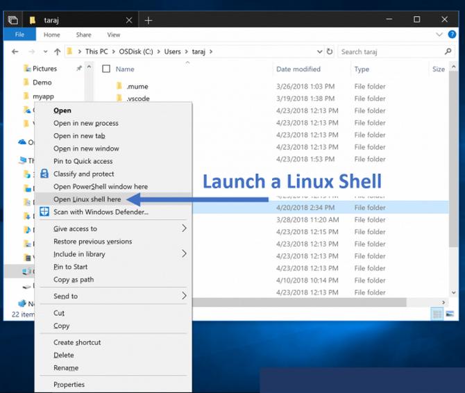 Linuksowy podsystem w Windows z płatną dystrybucją WLinux [3]