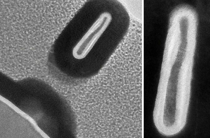 Inżynierowie z MIT wyprodukowali tranzystor o szerokości 2,5 nm [1]